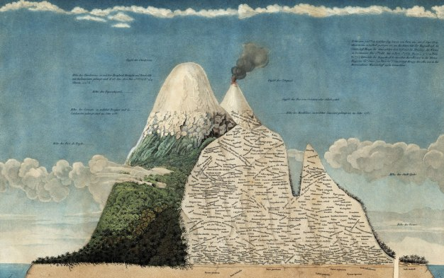 Painting of snow capped volcanic island with part of the mountain cut away, names of differetn species cover the cutaway, corresponding to the elevation where the species are found